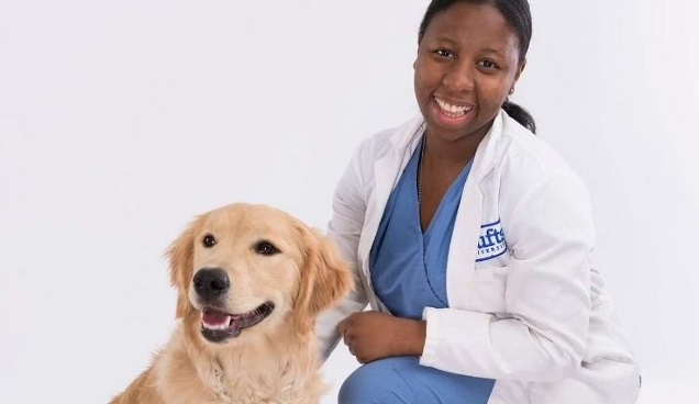veterinarian st. paul mn